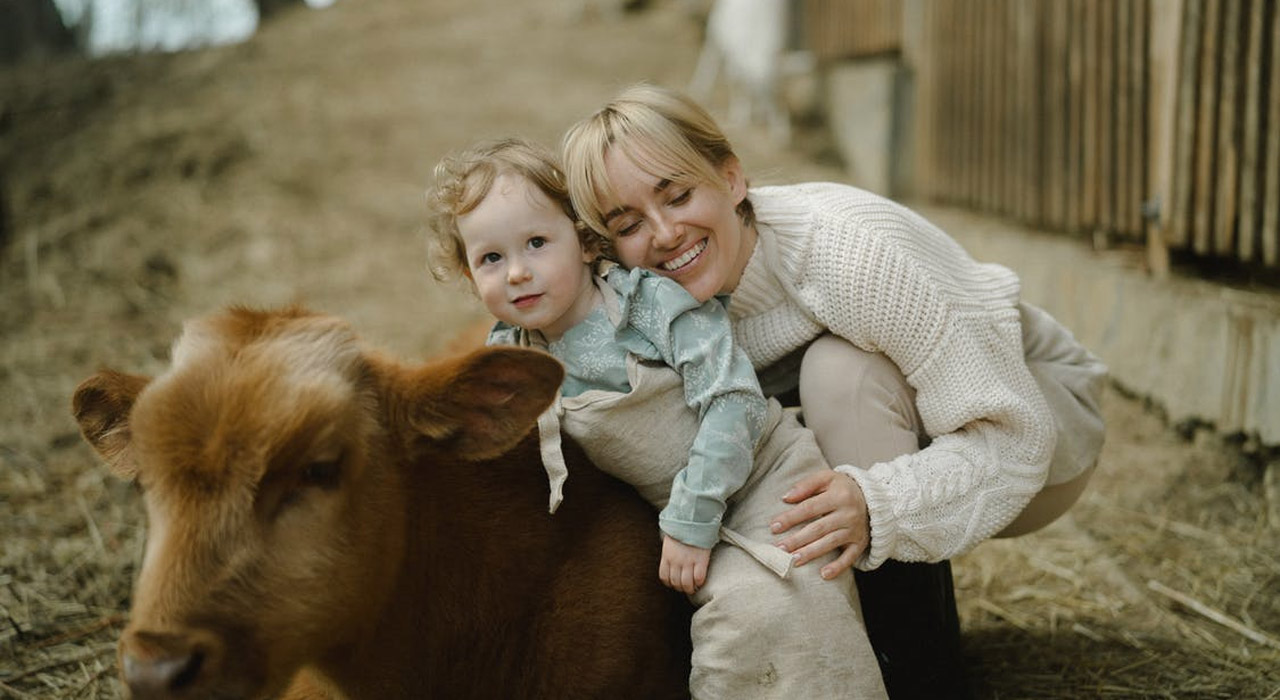 child-with-cow