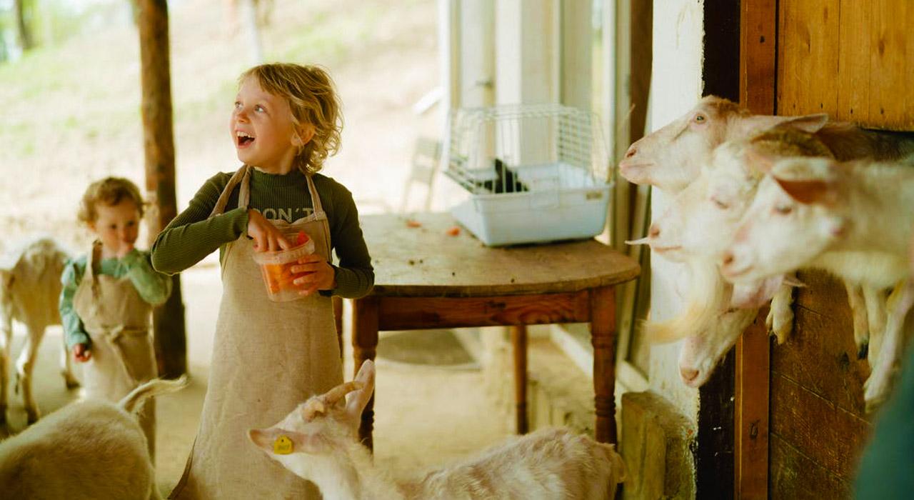 children-feeding-animal